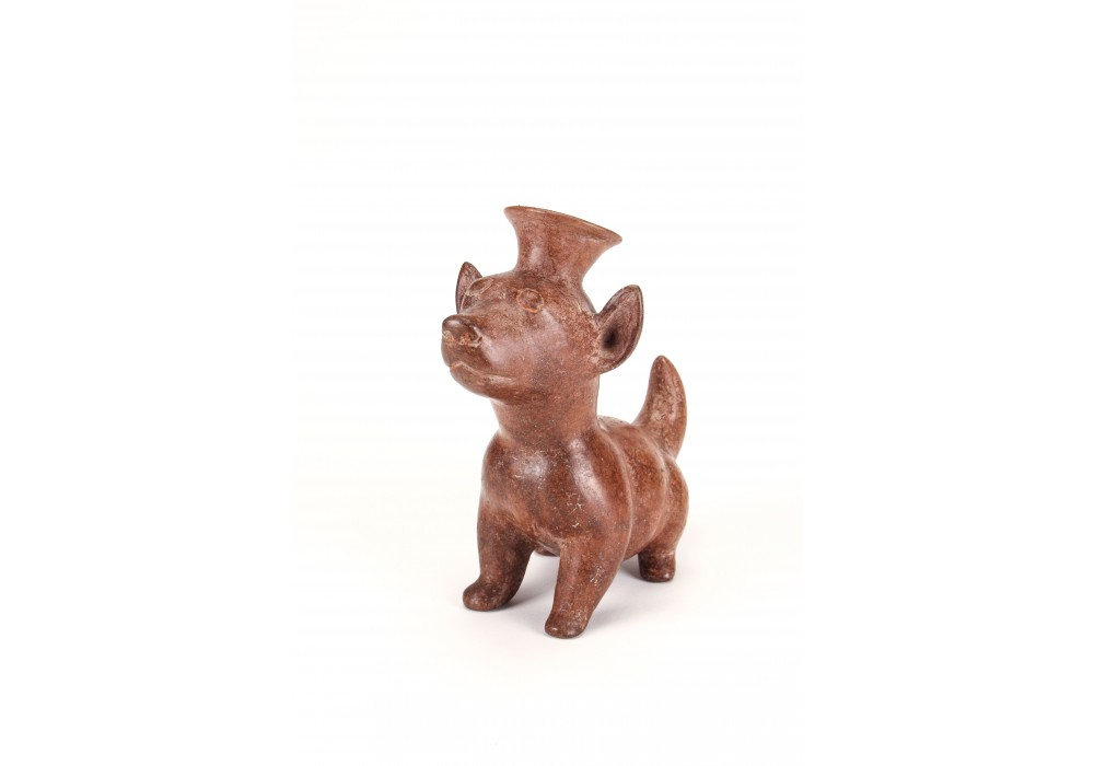 Colima dog in terracotta