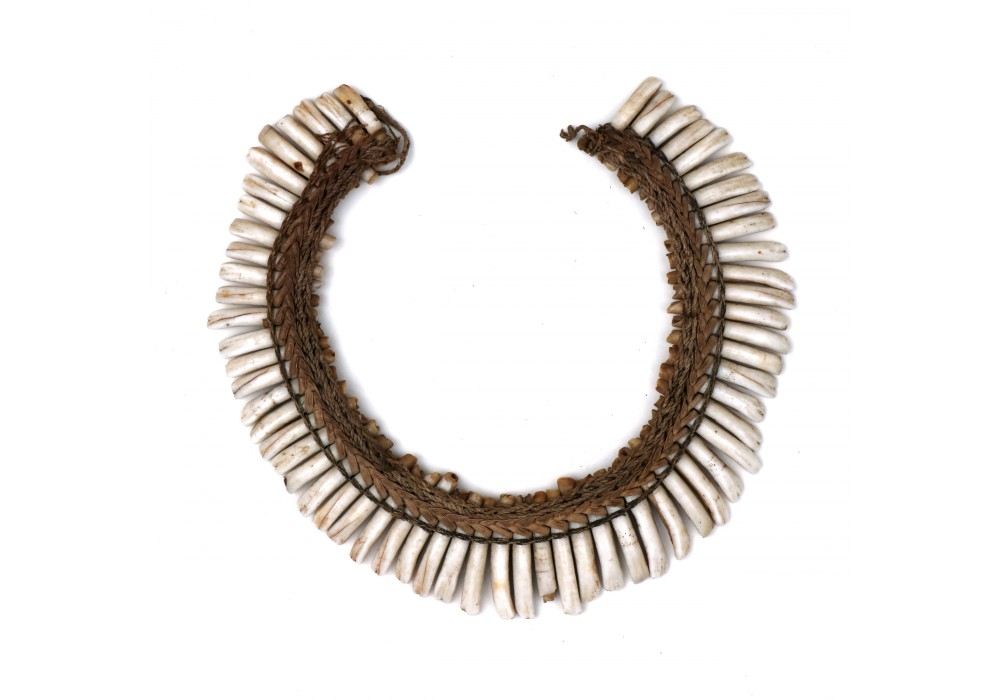Papua Necklace made of dog teeth