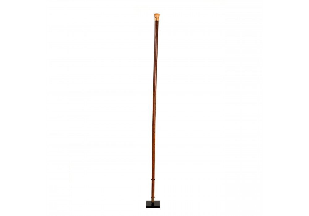 Chinese walking stick