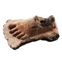 Pied Gupta en terre cuite
