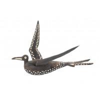 Oiseau frégate, Îles Salomon