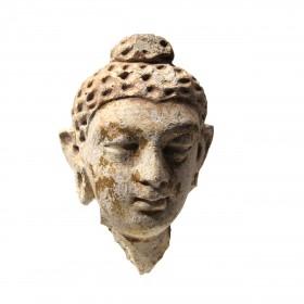 Tête d'un sujet bouddhiste Gandhara en stuc et feuille d'or