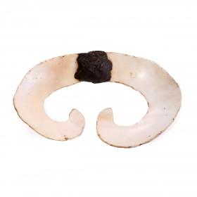 Ornement de nez Asmat en coquillage
