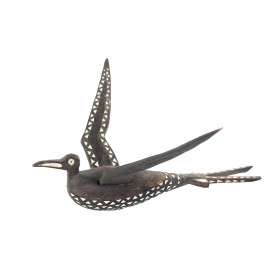 Oiseau, îles Salomon